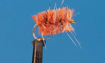 The 6 Best Fly Patterns for Winter Trout