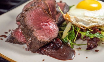 7 Tips to Help You Cook the Best Venison Backstrap Recipes