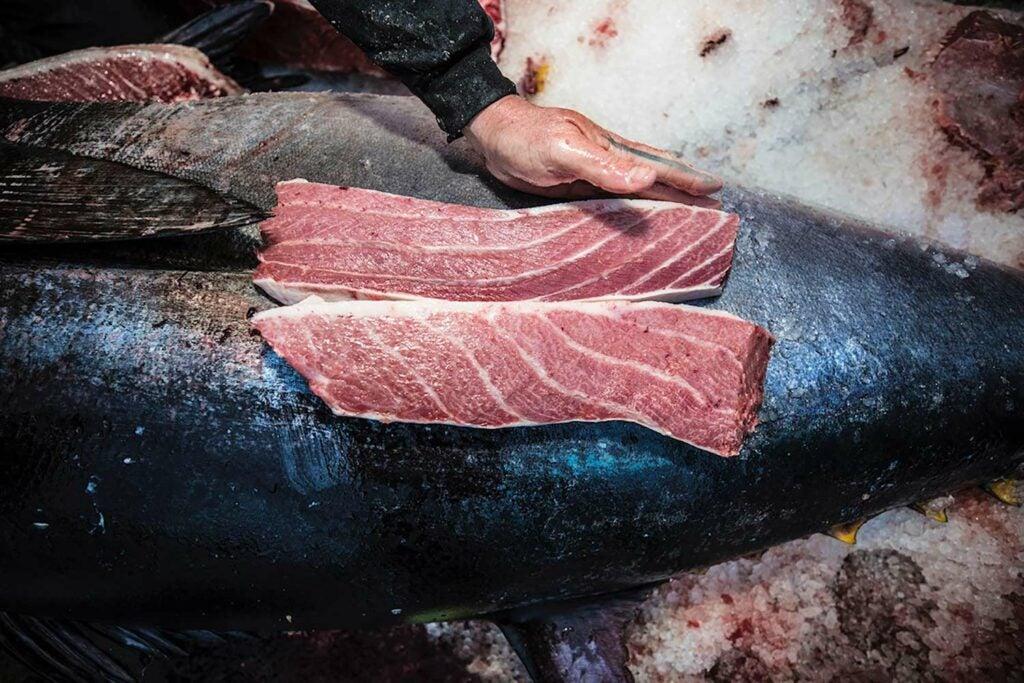 Large slabs of bluefin tuna steak.