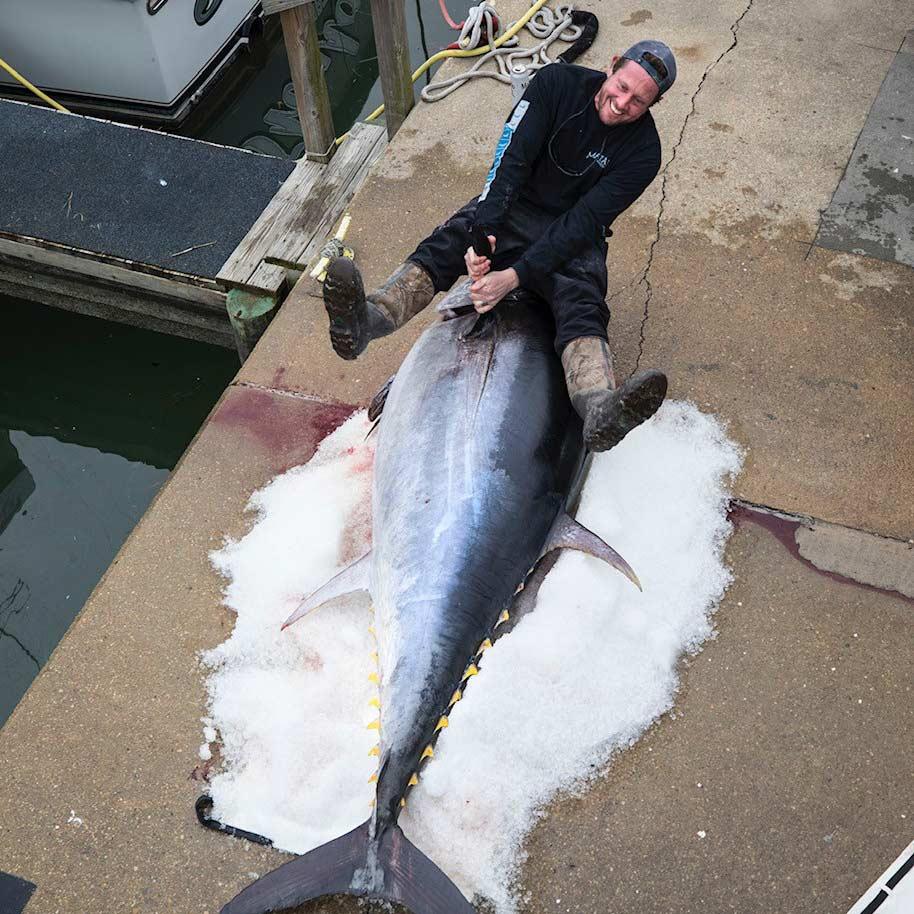Man next to a bluefin tuna.