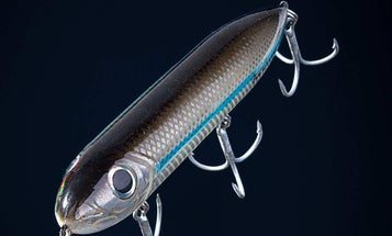 How to Fish for Seatrout at Night