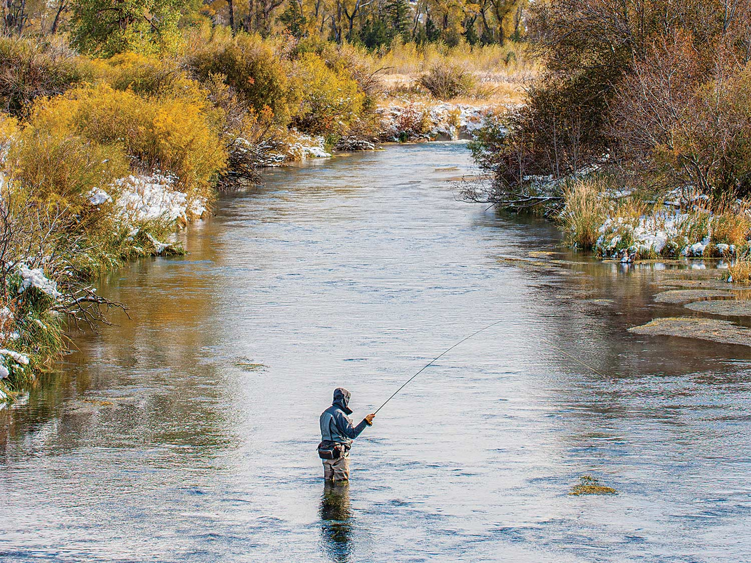 A fly angler fishing for steelhead trout in a stream.