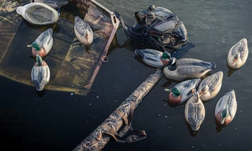 Three Duck Hunters Capsized in the Northeast