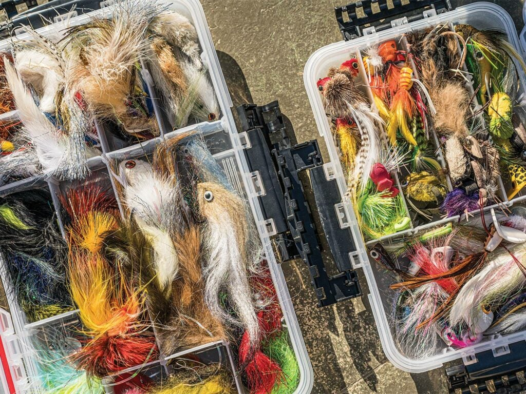 A large tackle box full of fly lures.