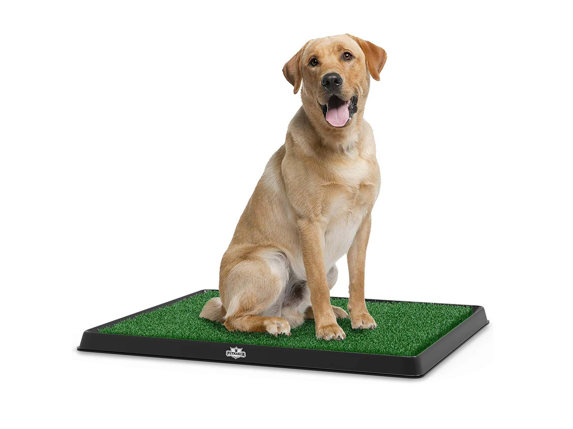 Artificial Grass Bathroom Mat for Puppies
