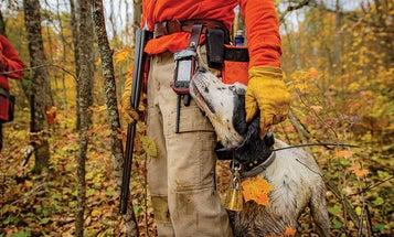 A Tribute to a Hunter's Best Friend