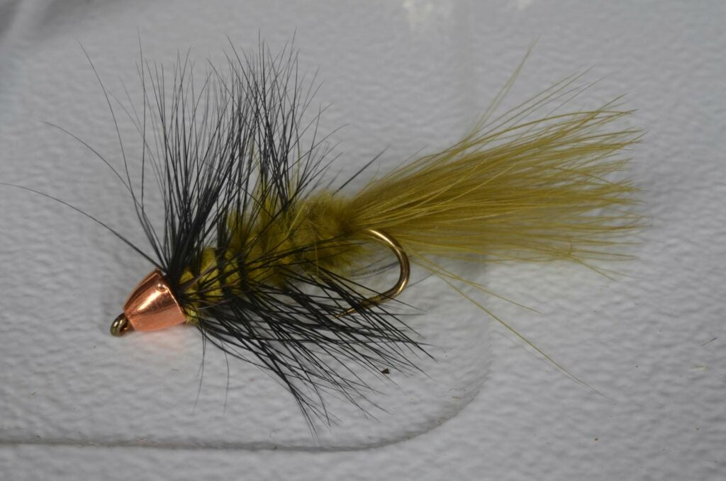 Woolly Bugger fly lure.