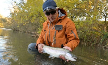 Catch Big Spring Trout in High, Dirty Water