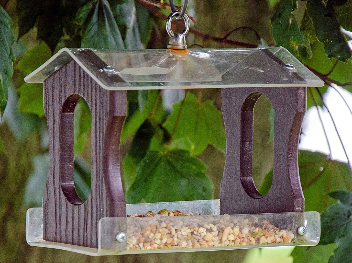 Attract more birds to your feeder