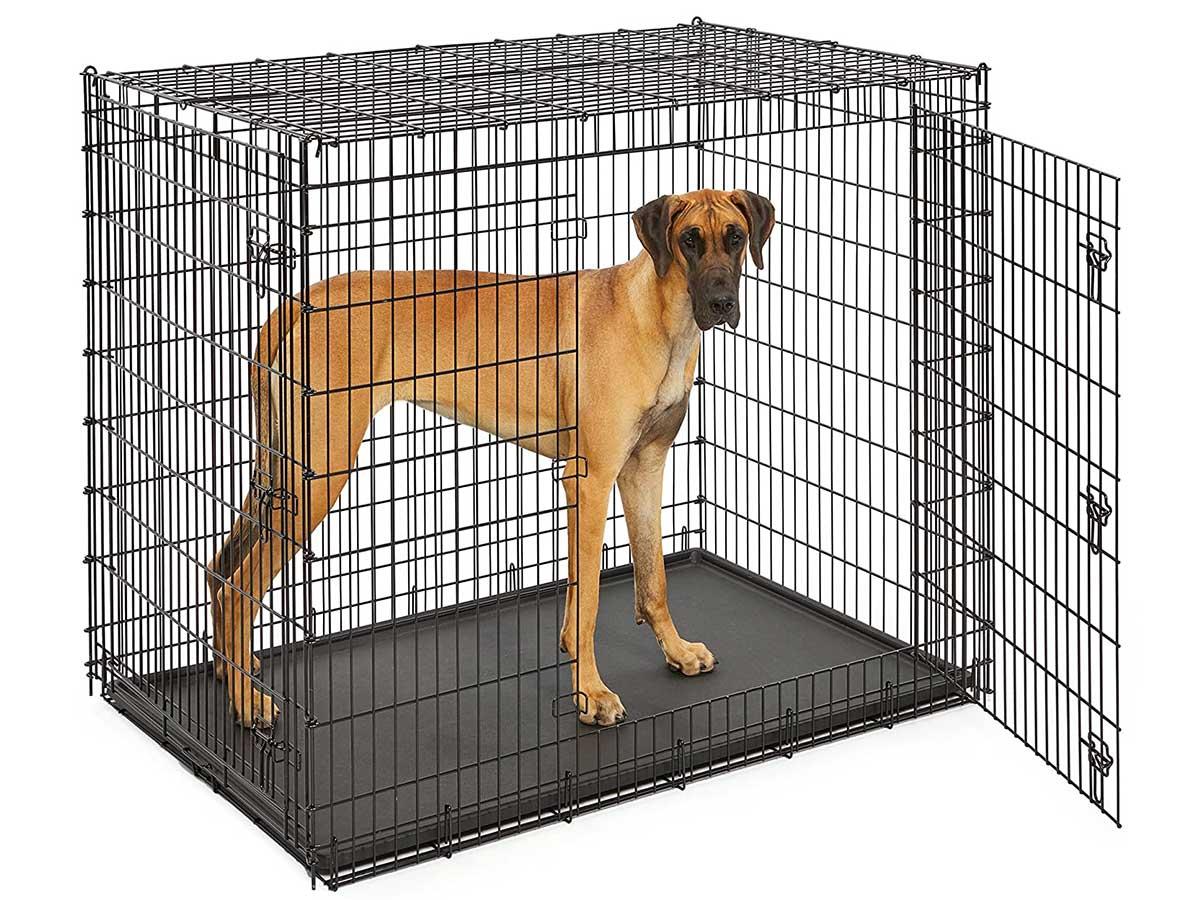 huge dog crate