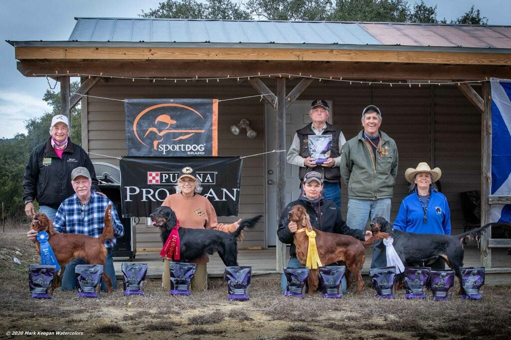 Texas hunting dog field trial winners.