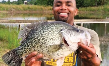 World Record Crappie: 12 of the Biggest Slabs of All Time