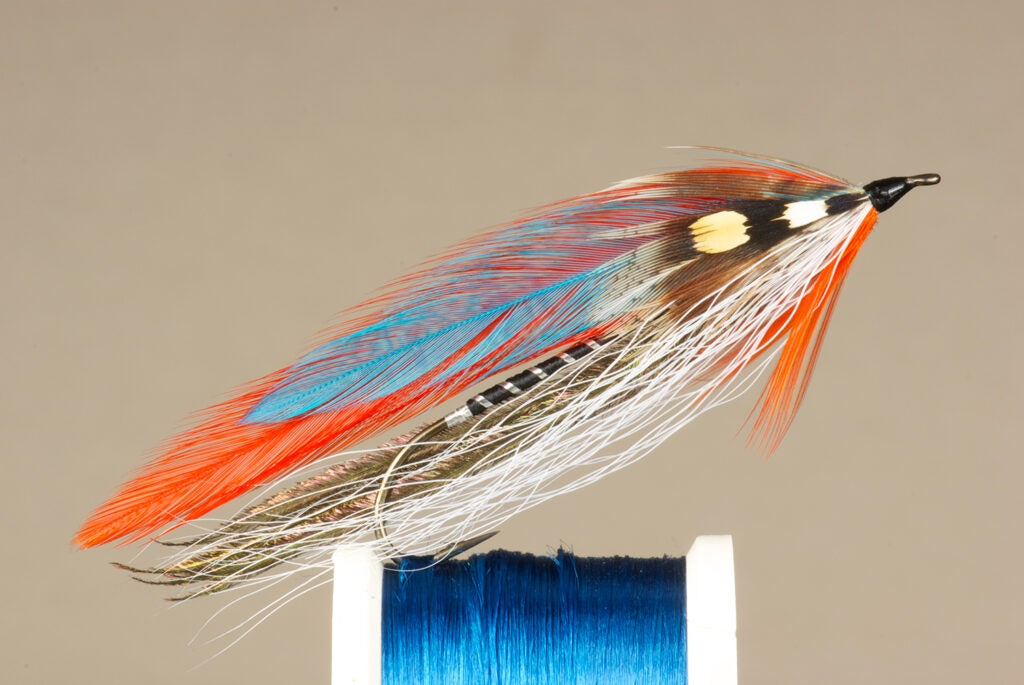 The Blue Devil fly fishing lure.