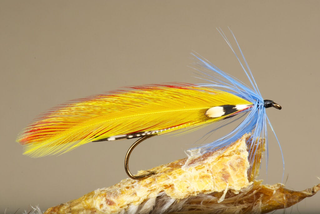 Cains River Roaring Rapids fly fishing lure.