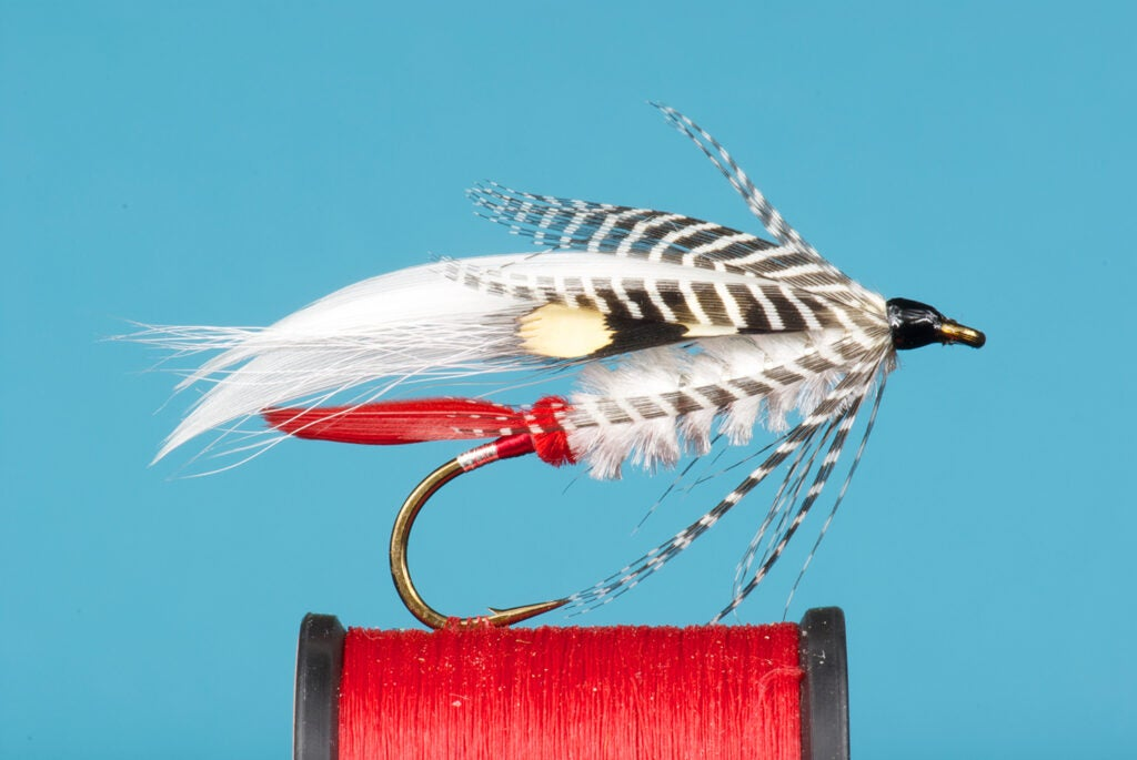 The Bumblepuppy fly fishing lure.