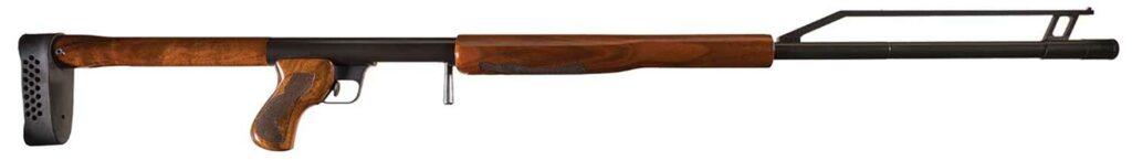 The Ljutic Space Gun.