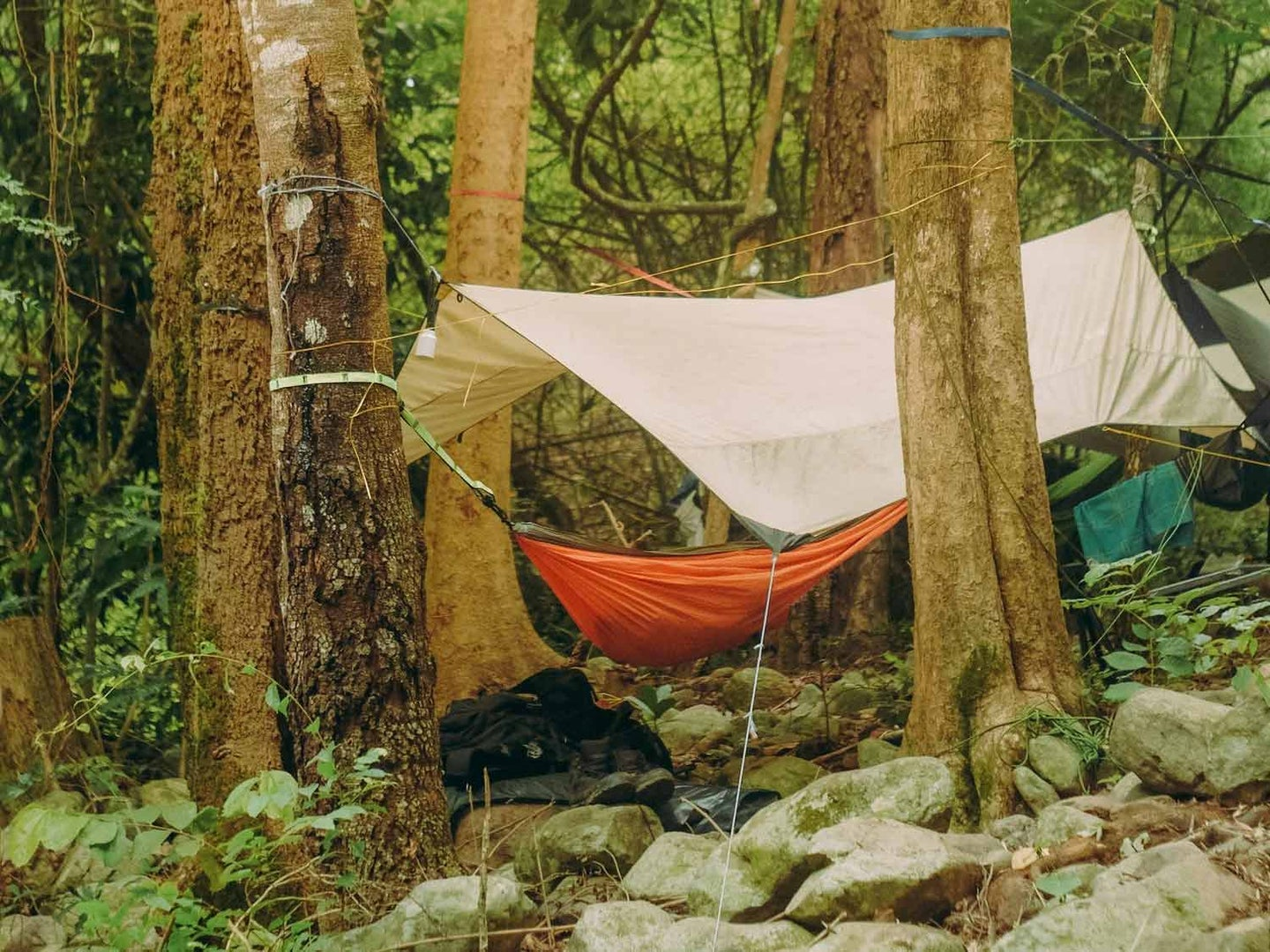 Campsite with a tarp over it