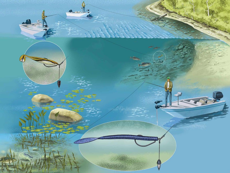 Bass fishing rig tips.