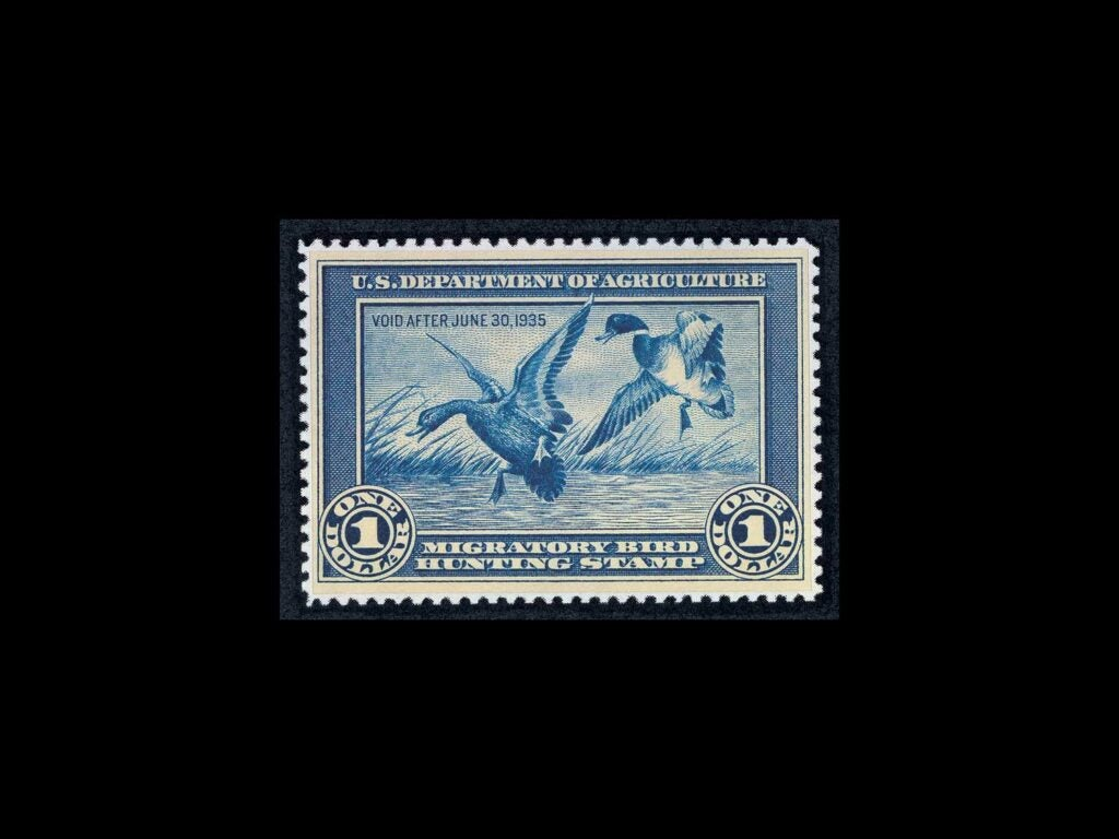 """Mallards By Jay N. """"Ding"""" Darling – 1934-1935 stamp on a black background."""