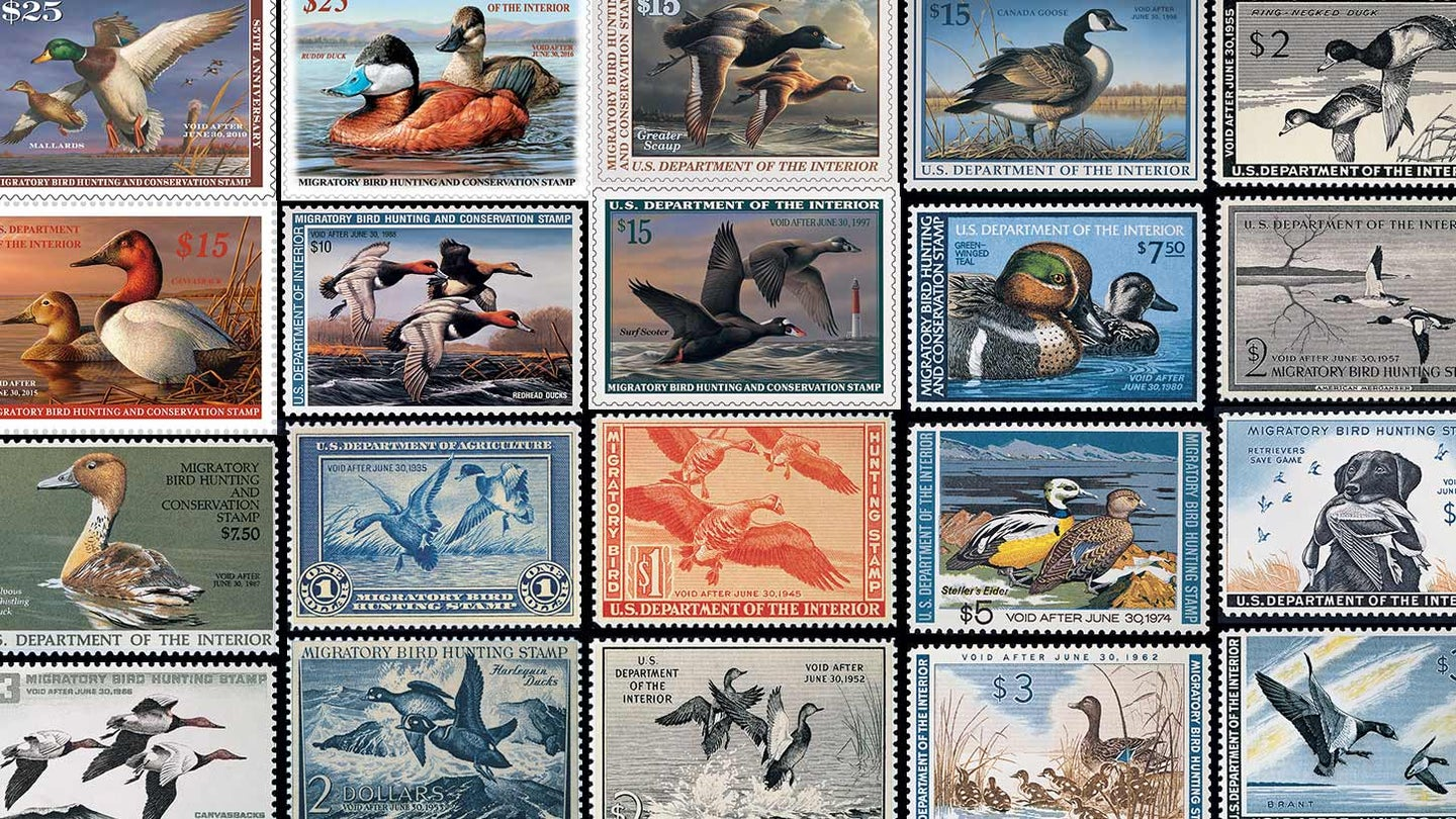 Collage of duck stamps