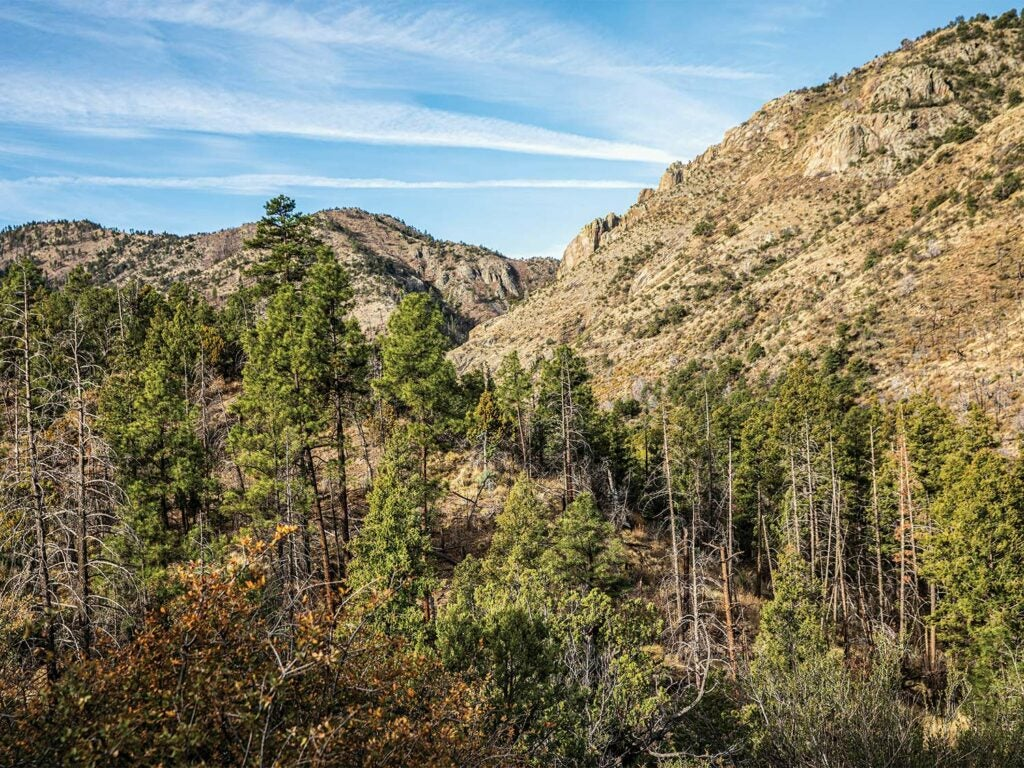 A mountain range in the Aldo Leupold Wilderness.