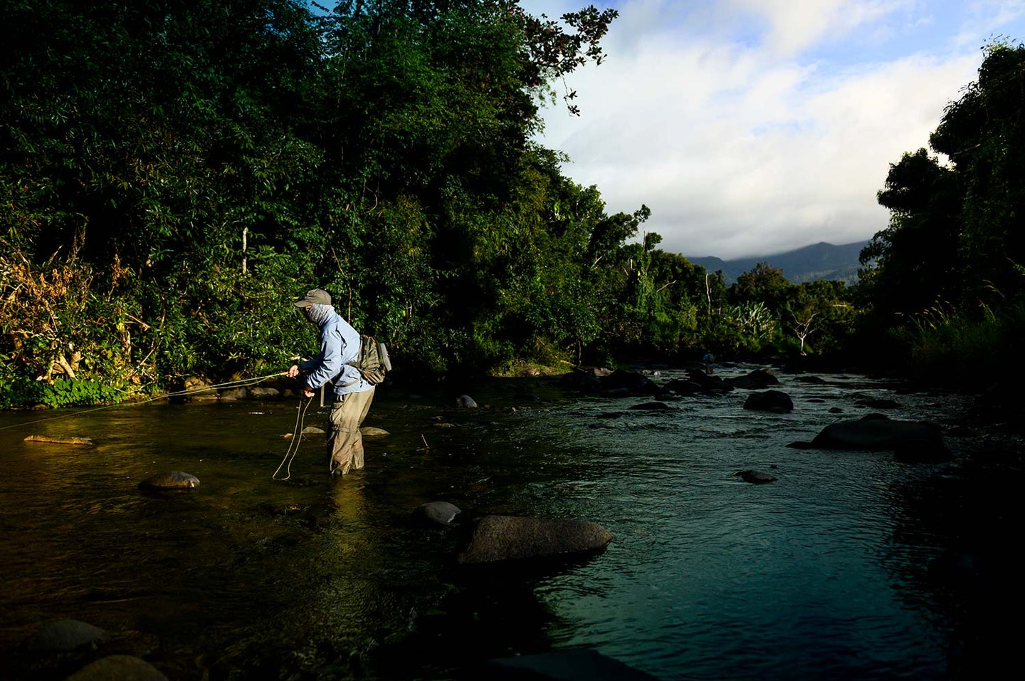An angler fishing in a Puerto Rico river.