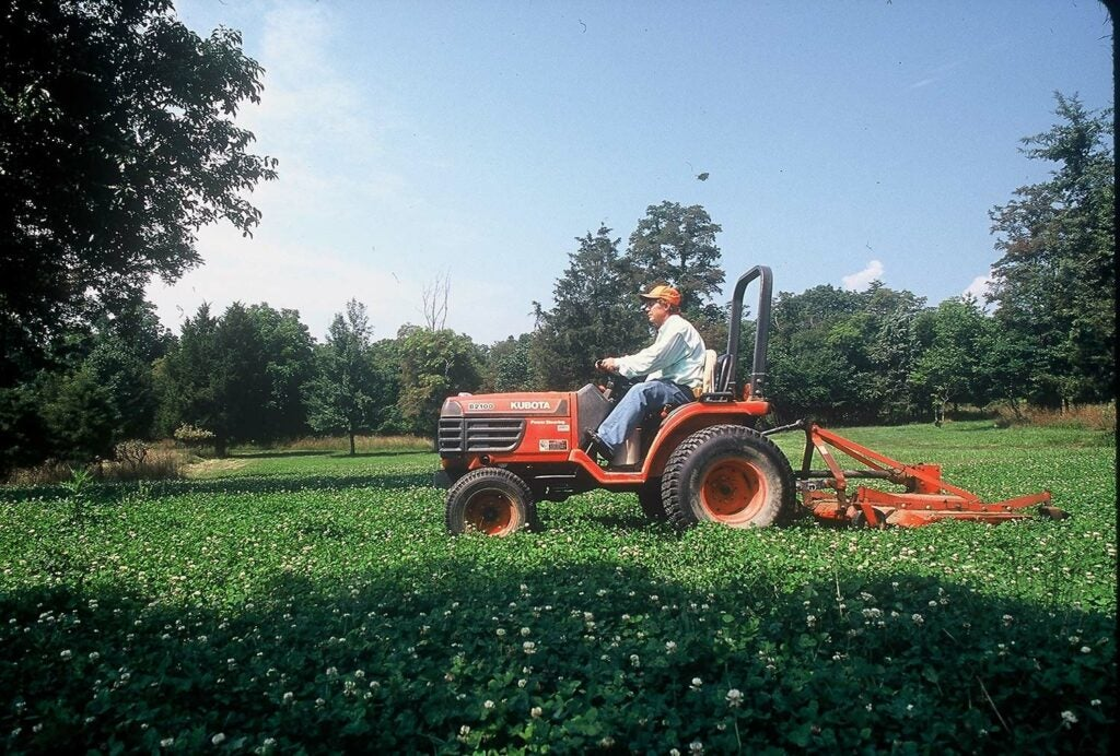 A man on a tractor mows a field of white clovers.