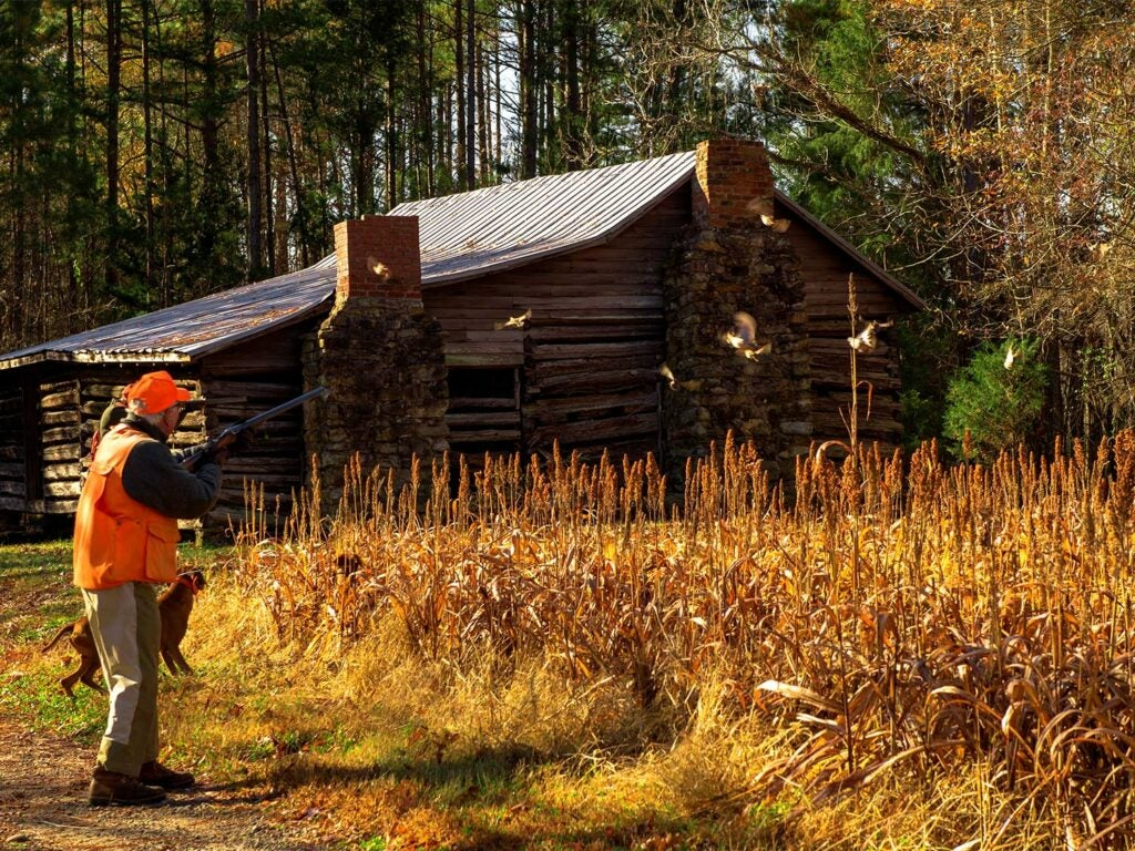 A hunter aiming a rifle beside a field and cabin.
