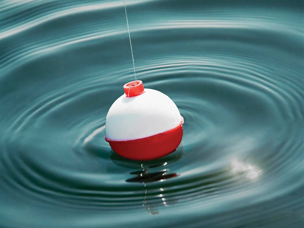 A red and white fishing bobber in the water.