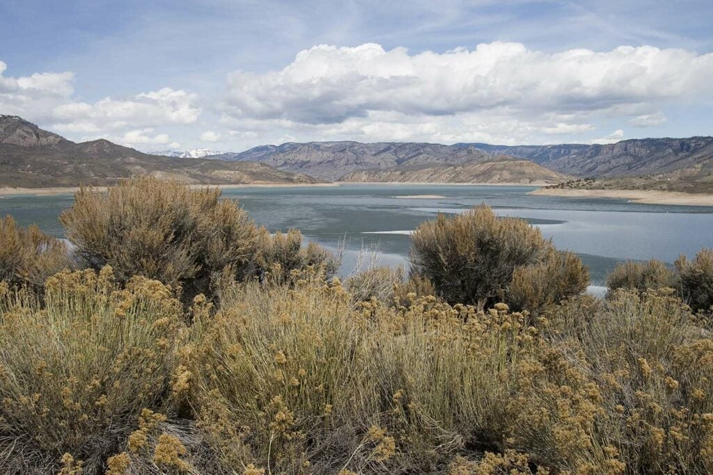 The Blue Mesa Reservoir wilderness and lake