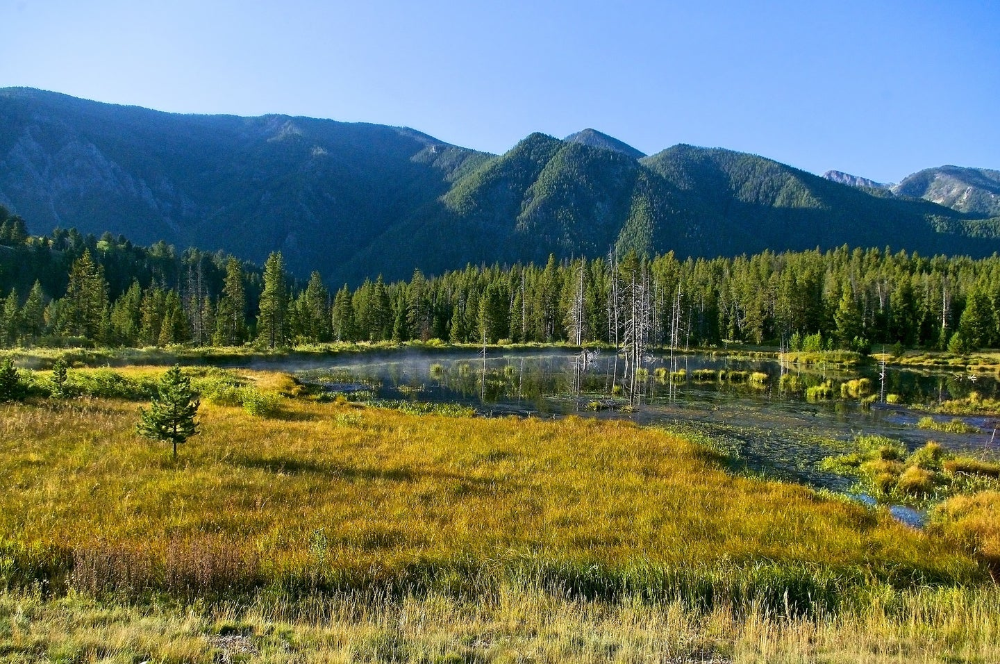 A landscape photo of the Madison River running through a mountainside.