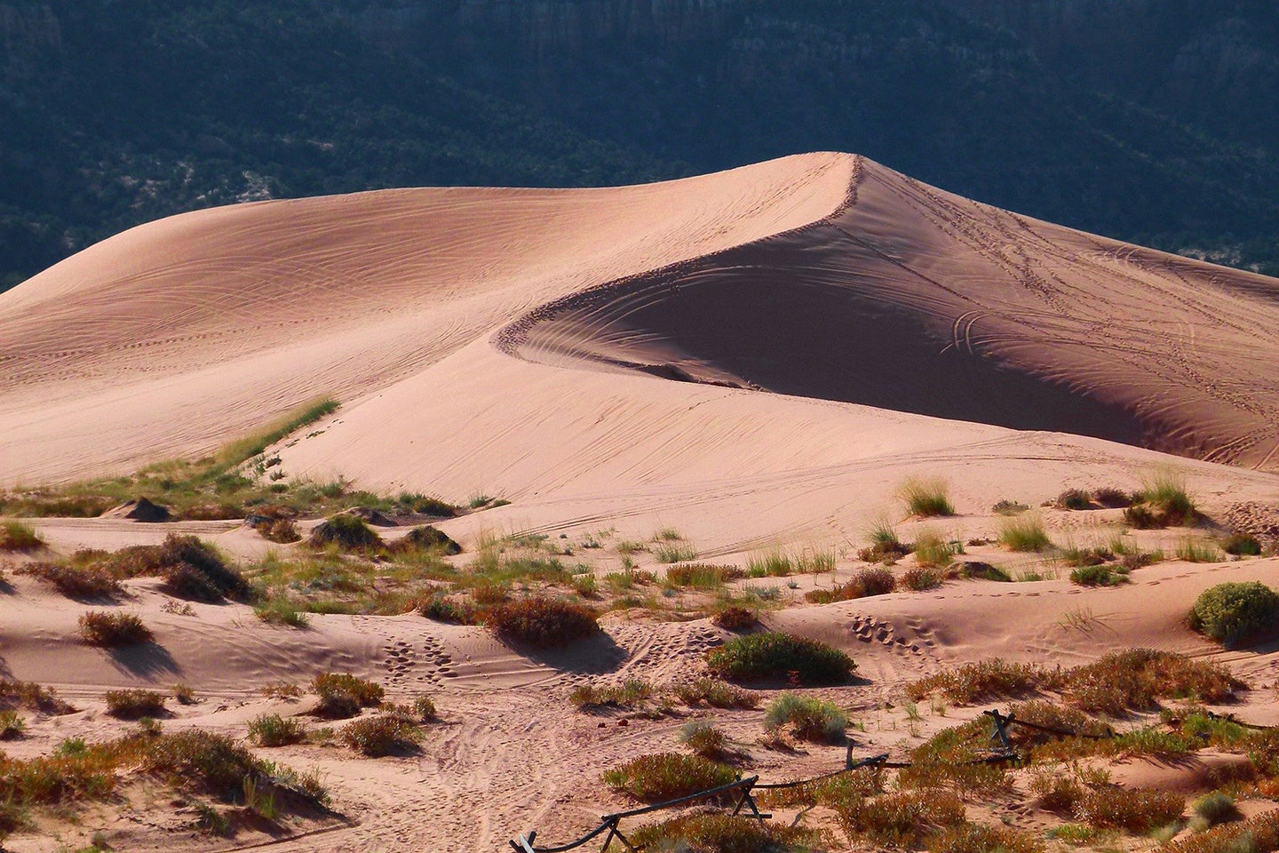 A sand hill in the desert.