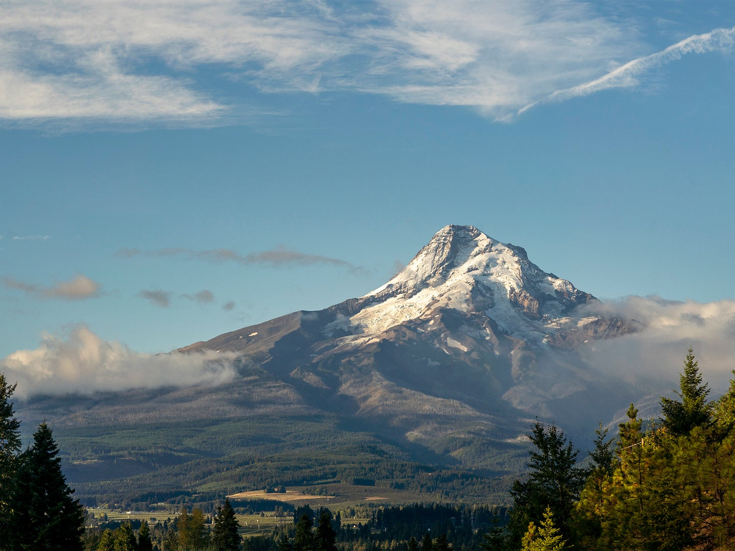 A view of Mount Hood National Forest in Oregon.