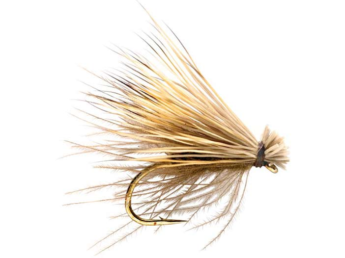 The Elk Hair Caddis fkittering fly.