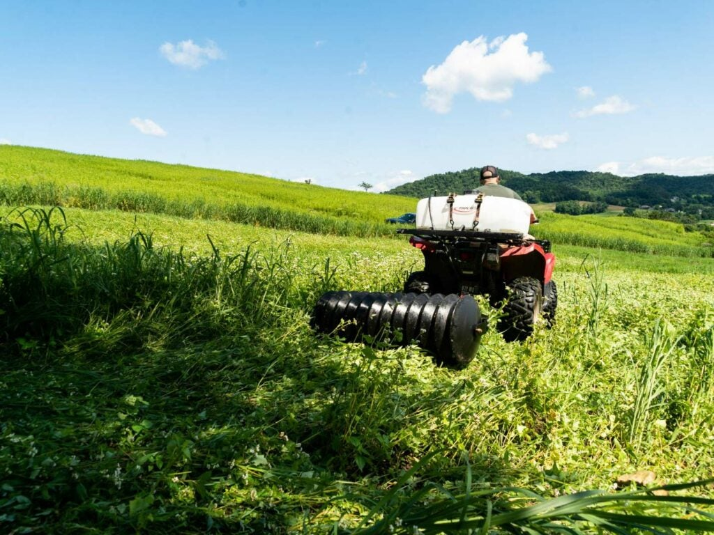 A hunter rides a ATV through a field with a cultipacker and herbicide sprayer.
