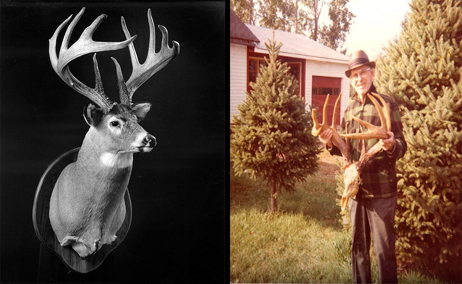 A side-by-side image. On the left: A black and white image of a trophy whitetail deer mount. Right: an image of a man holding up a trophy whitetail deer antler set.