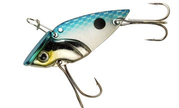 16 Best Jigs, Spinners, and Baits for Crappie Fishing