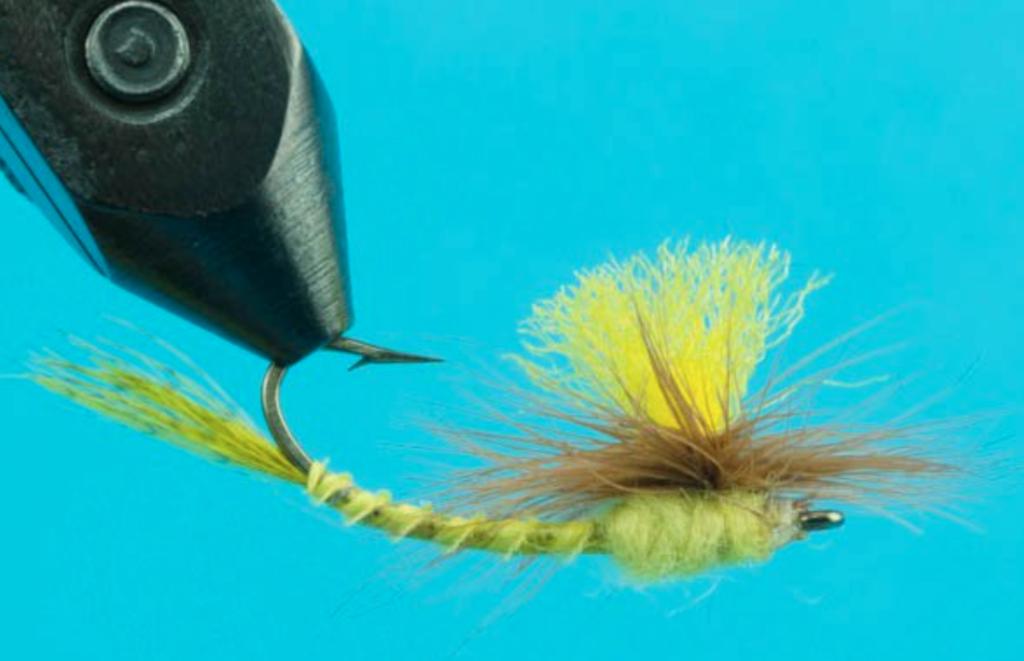 yellow drake fly.