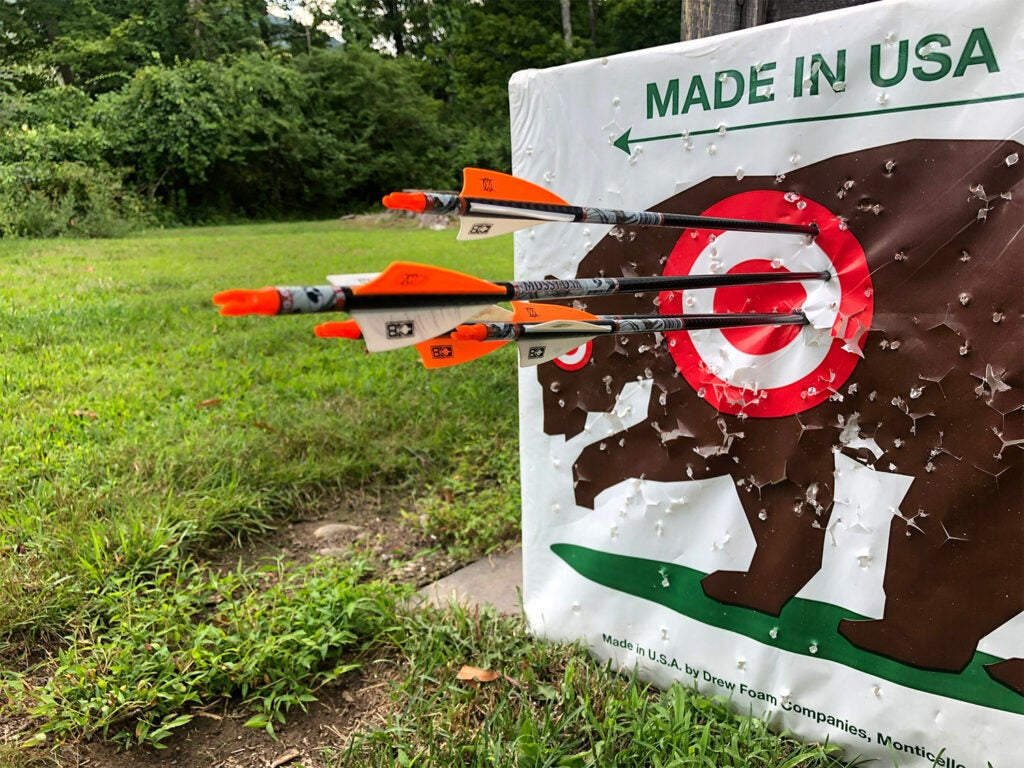 Several arrows in a paper bear target.