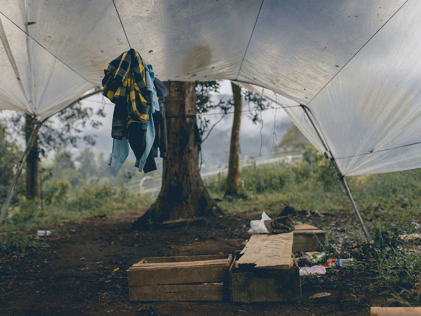 tent rain fly covering items