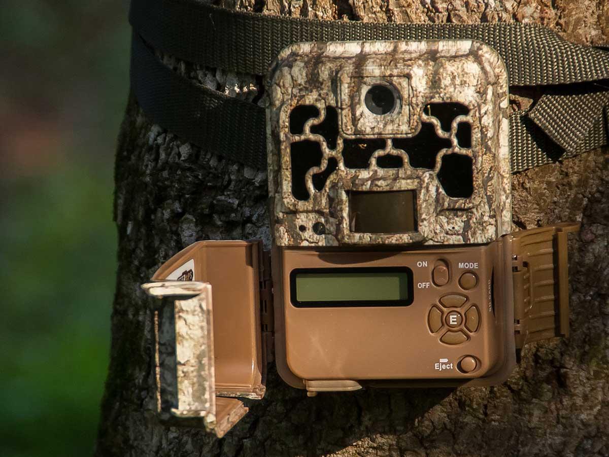 Modern trail camera on a tree