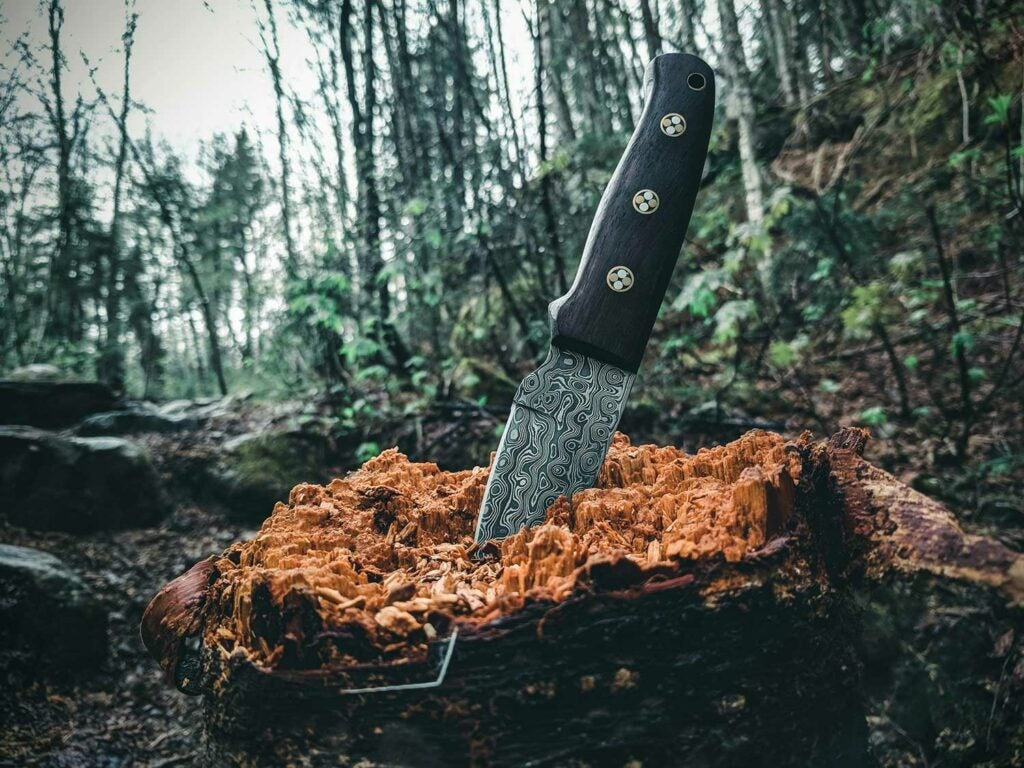 Sharpened knife in tree stump in woods.