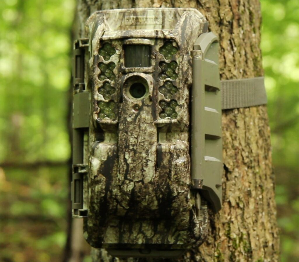 A trail camera attached to a tree in the woods.