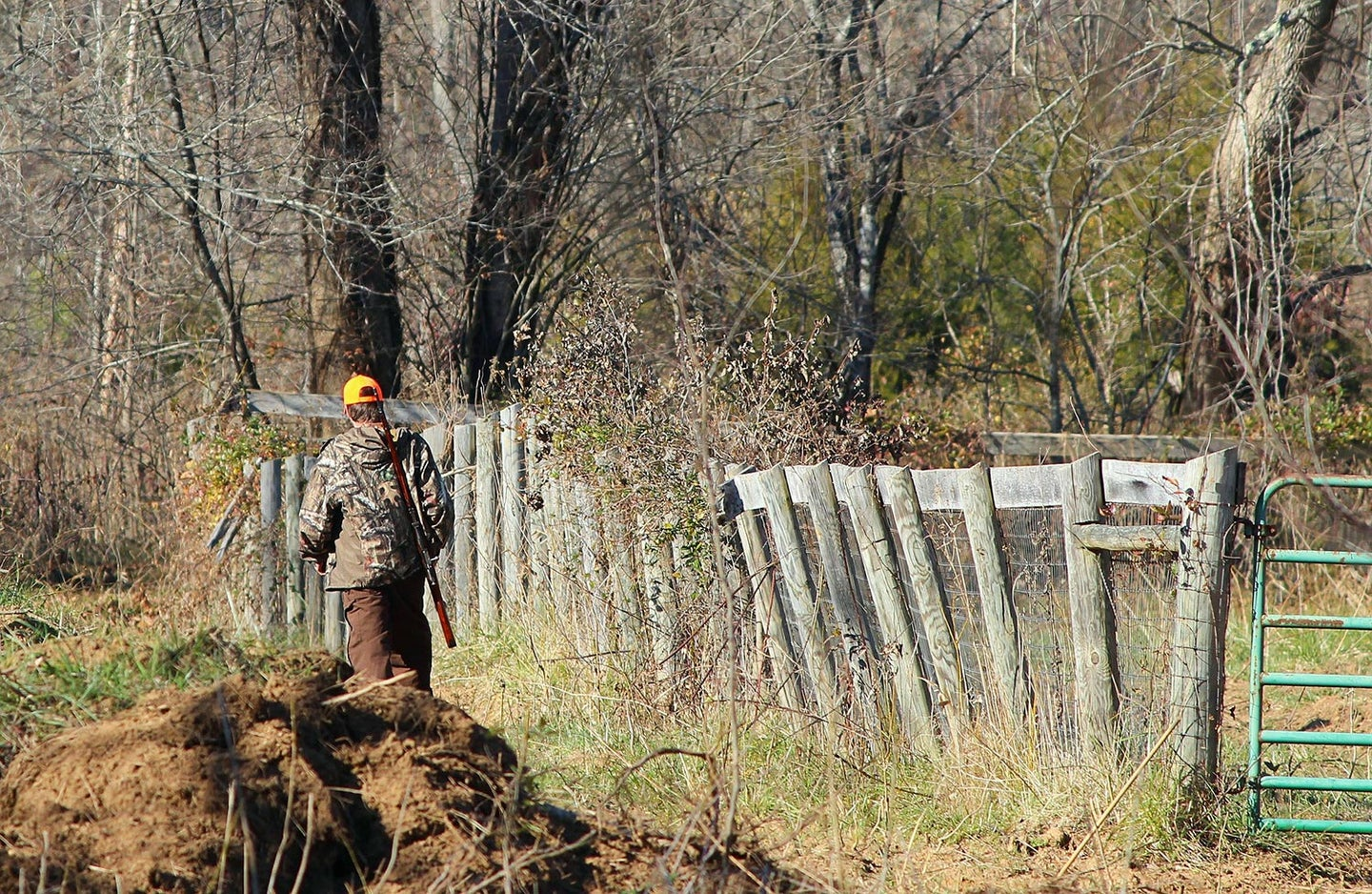 A hunter walking on a fence line with a rifle over their shoulder.