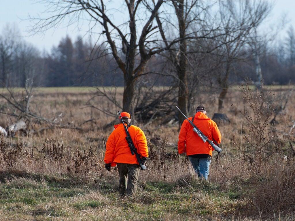 Two hunters in orange walk through a large open field.