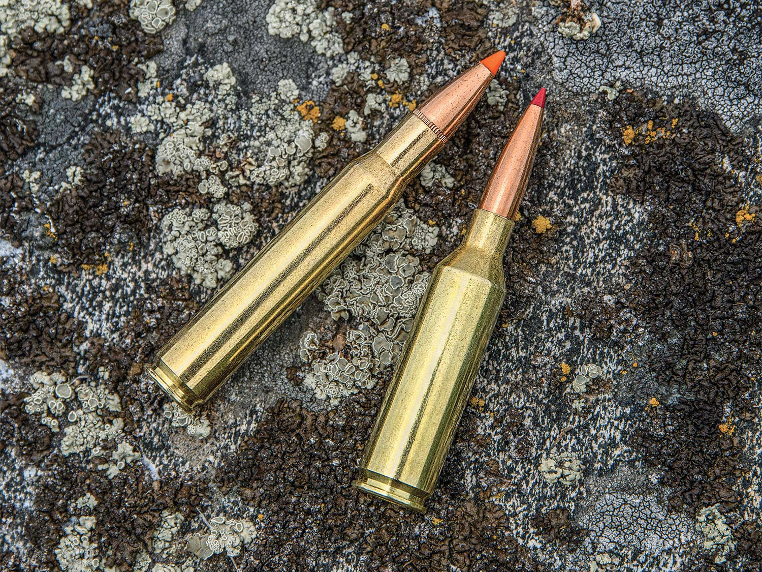 Two rifle cartridges on a stone background.