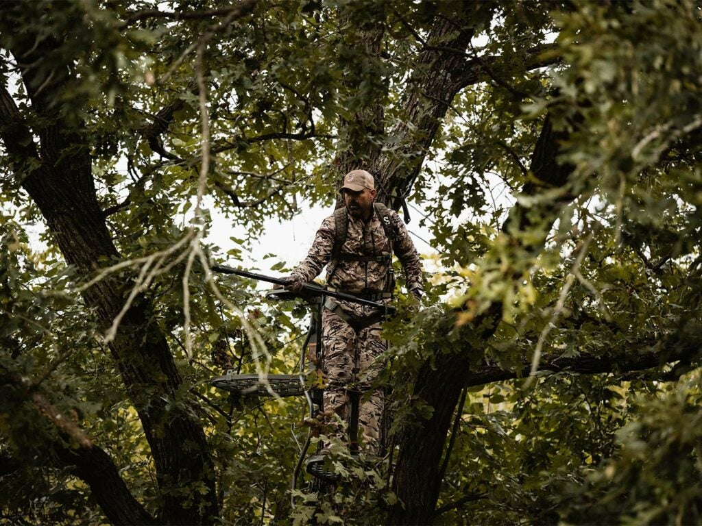 A hunter trims branches to clear a line of sight in their tree stand.