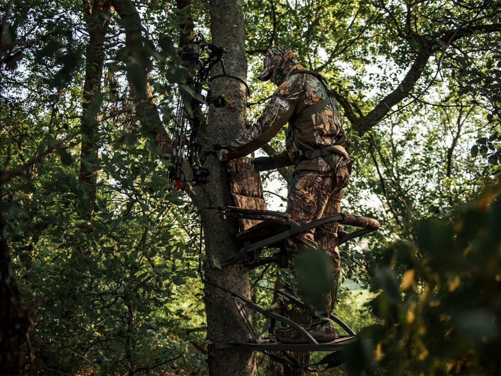 A hunter climbs into a tree stand before setting up a hunt.
