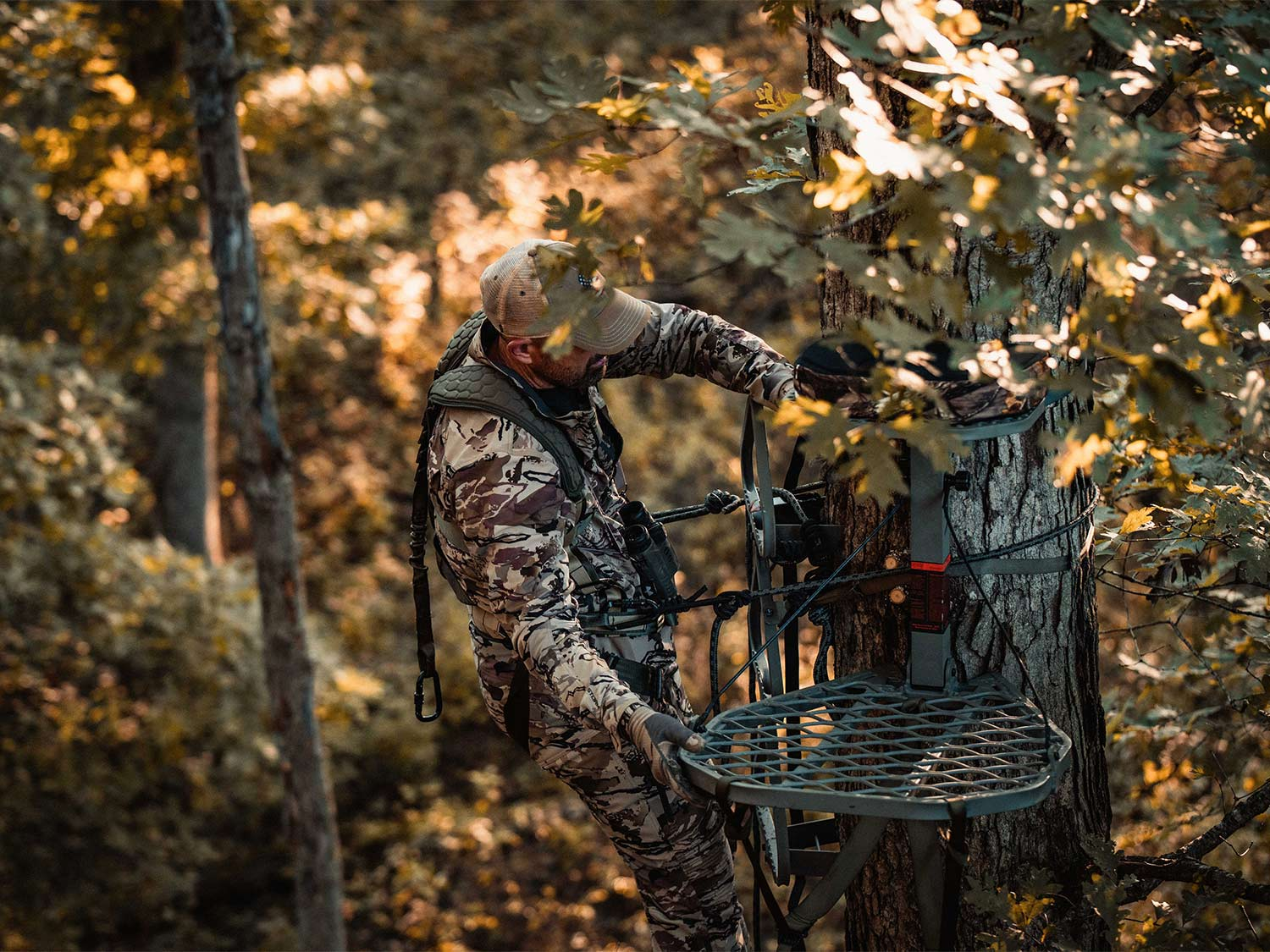 A hunter attaches a tree stand to the side of a tree.