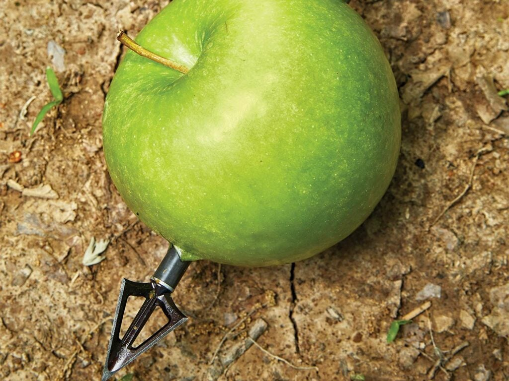 A green apple with an arrow stuck through it.